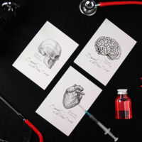 TWY180111-13_科學明信片 - 人體解剖圖 Science Postcard - Anatomy Image
