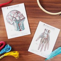 TWY180115-16_科學明信片 - 人體解剖圖 Science Postcard - Anatomy Image (1)